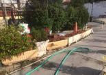 Ege Mahallesinde Çiçeklik/Saksı, Duvar ve Kaldırım Bordür Boya Çalışması