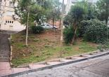 Murat Reis Mahallesi 199 Sokakta Yeşil Alan Düzenleme Çalışması